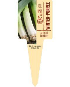 Allium porrum, Bildstecketikett VS: