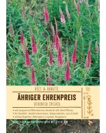 Sortenschild, Veronica spicata