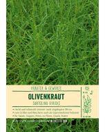 Sortenschild, Santolina viridis