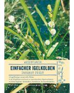 Sortenschild, Sparganium emersum