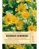 Sortenschild, Doronicum orientale 'Goldzwerg'