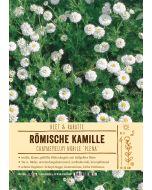 Sortenschild, Chamaemelum nobile 'Plena'