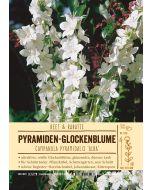 Sortenschild, Campanula pyramidalis 'Alba'