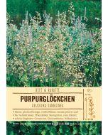 Sortenschild, Heuchera sanguinea