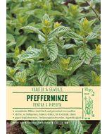 Sortenschild, Mentha x piperita