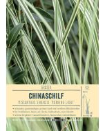 Sortenschild, Miscanthus sinensis 'Morning Light'
