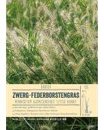 Sortenschild, Pennisetum alopecuroides 'Little Bunny'