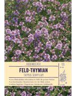 Sortenschild, Thymus serpyllum