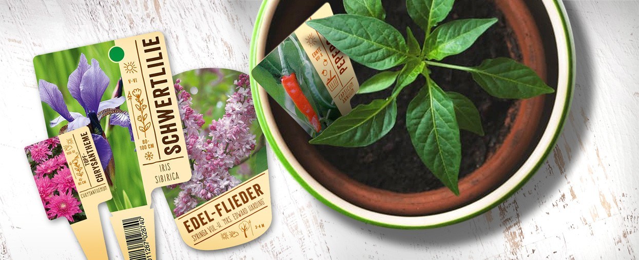 Bildetiketten für Pflanzen