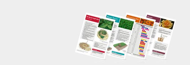 Infoblätter von Güse in drei verschiedenen Varianten abgebildet
