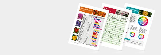 Infoposter von Güse in drei verschiedenen Varianten abgebildet